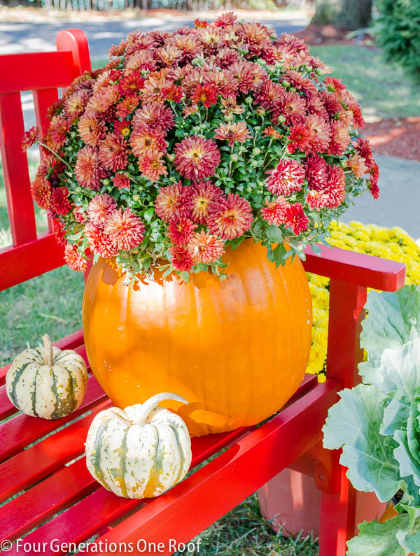 DIY-Pumpkin-Planter-1