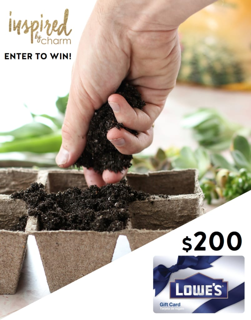 Lowe's Giveaway & Succulent Propagation | Inspired by Charm