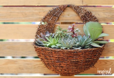 DIY Succulent Wall Planter | Inspired by Charm