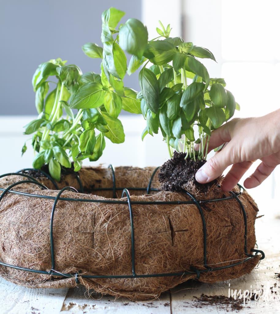 DIY Herb Wreath | inspiredbycharm.com