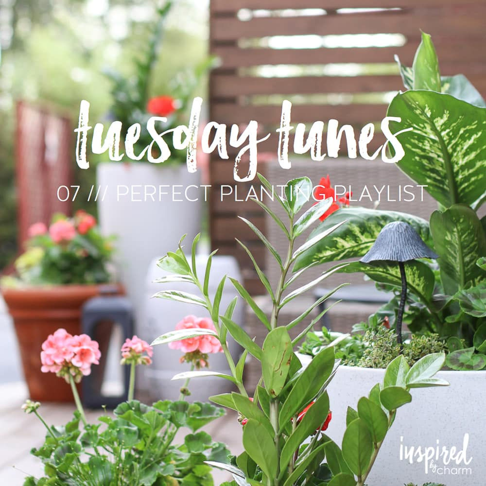 Tuesday Tunes 07 Perfect Planting Playlist | inspiredbycharm.com