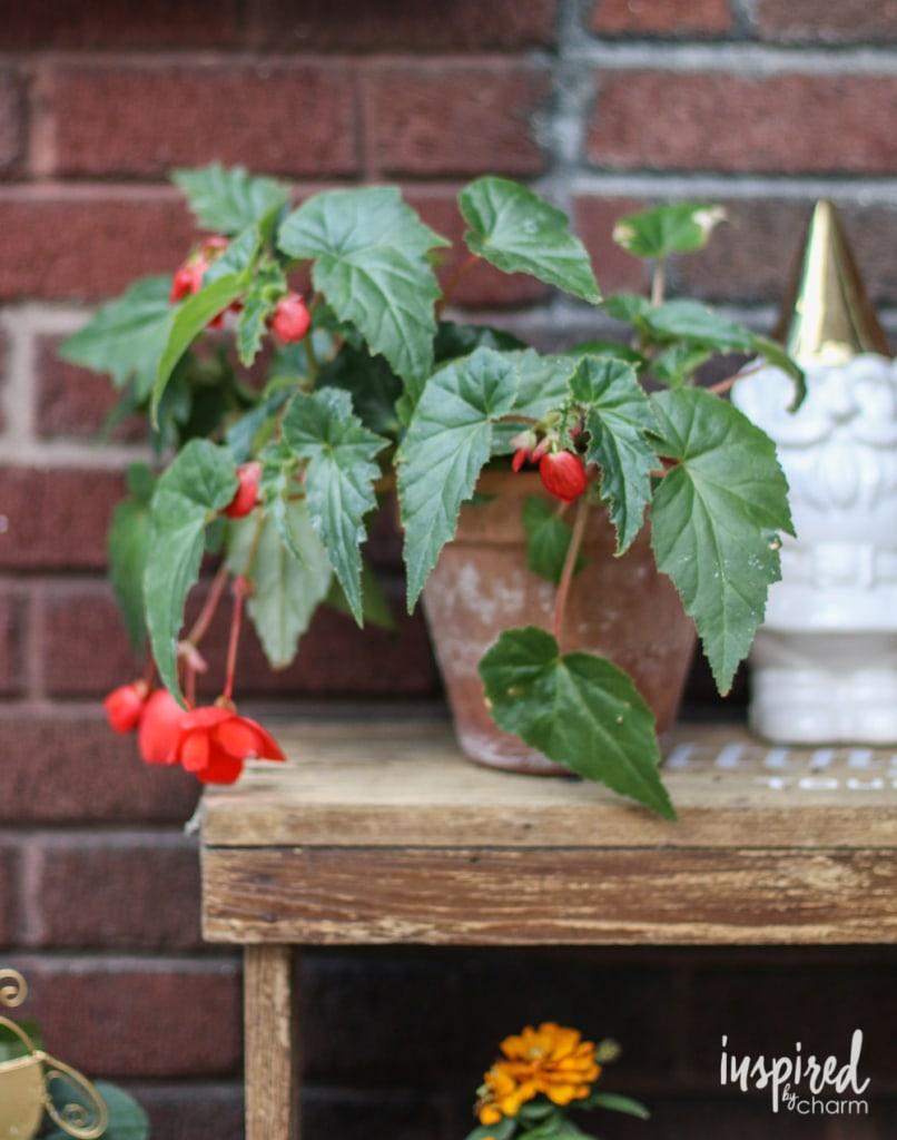 Stenciled Potting Bench | inspiredbycharm.com