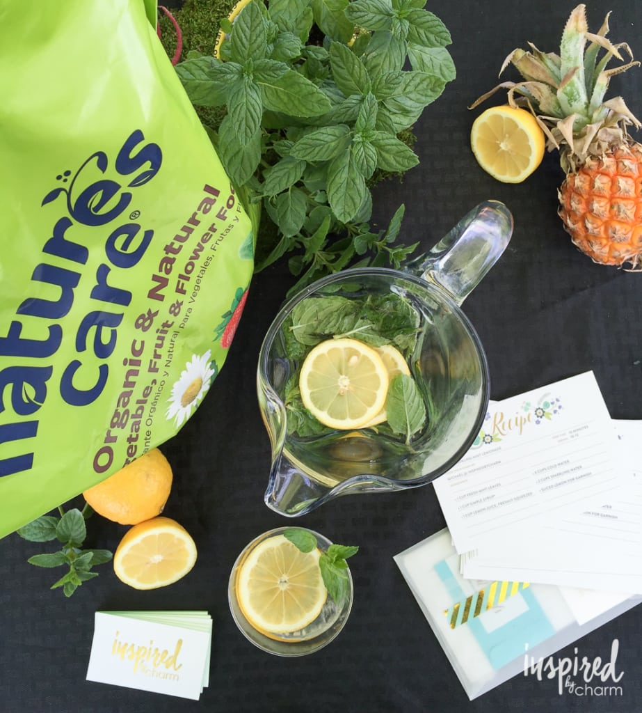 Sparkling Mint Lemonade | inspiredbycharm.com