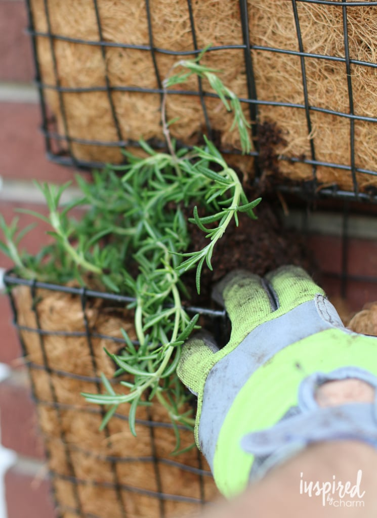Learn how to make a vertical herb garden with this easy tutorial! #vertical #herb #garden #tutorial