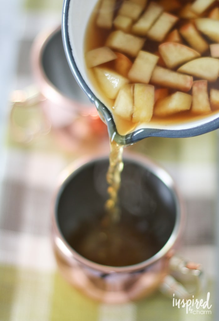 Apple Cinnamon Hot Toddy | inspiredbycharm.com
