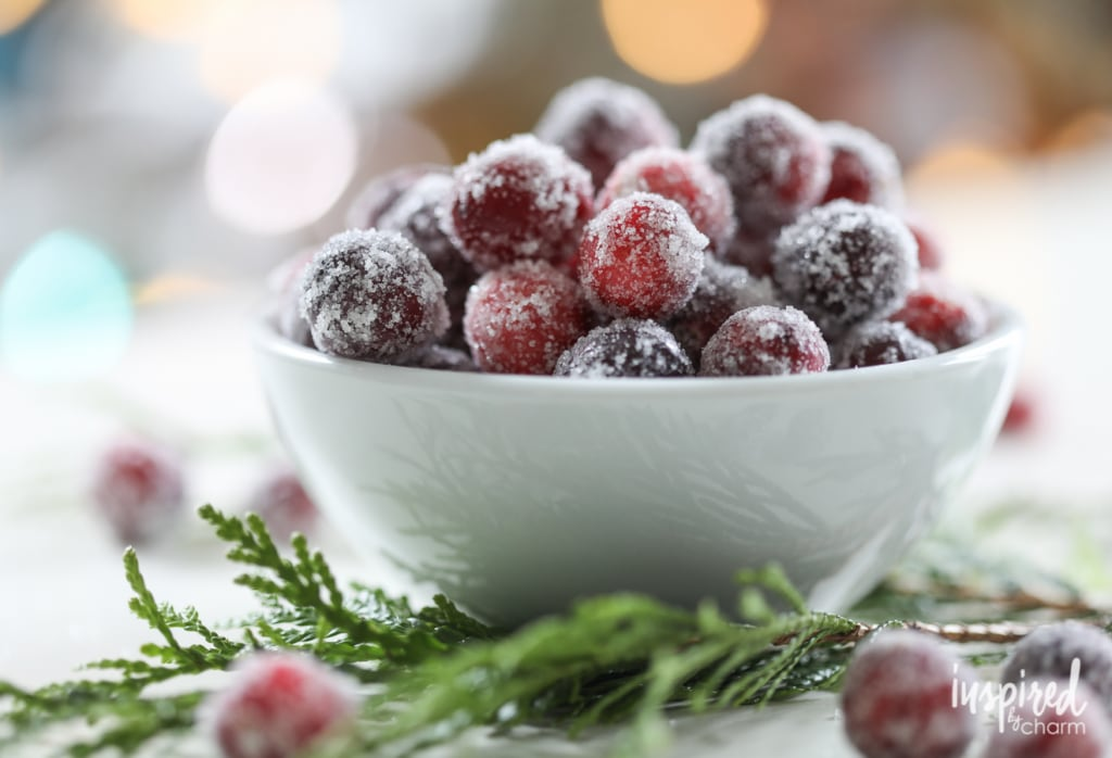 Sugared Cranberries and Gingerbread House Cake   inspiredbycharm.com #IBCholiday