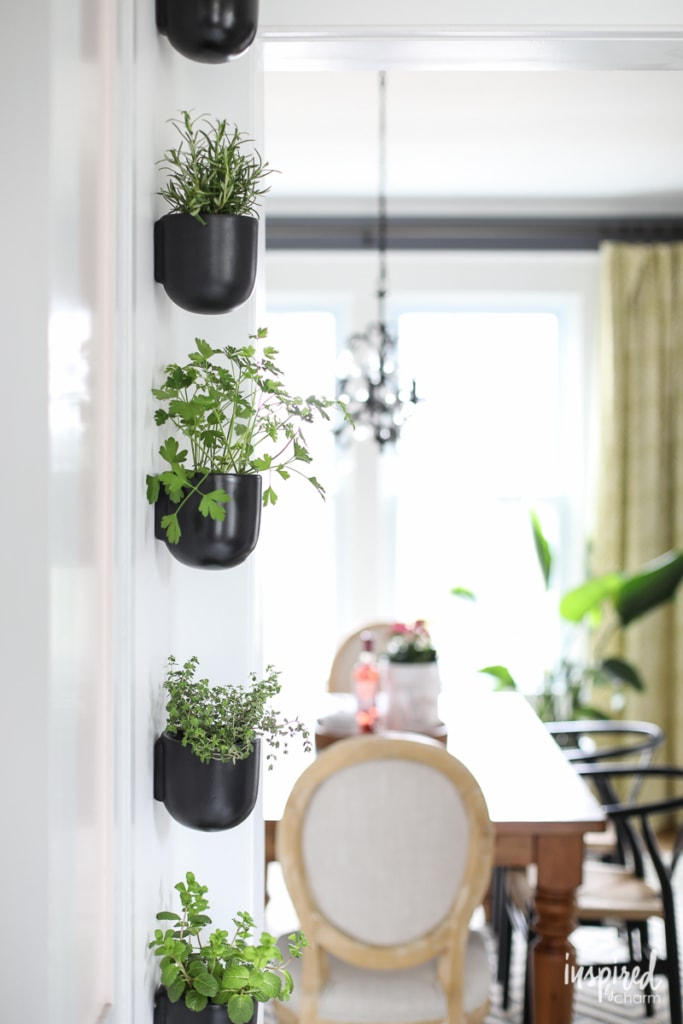 Modern Kitchen Herb Garden | Inspired by Charm