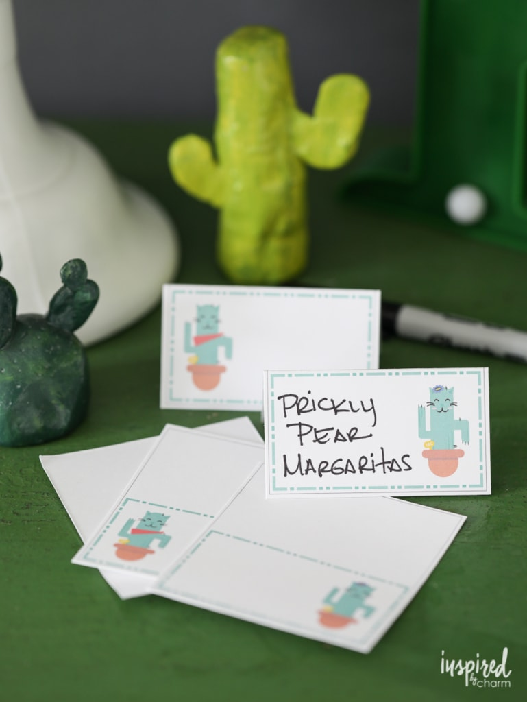 Cactus Themed Party ideas for a unique and fun celebration. Cactus Party Decor | Inspired by Charm