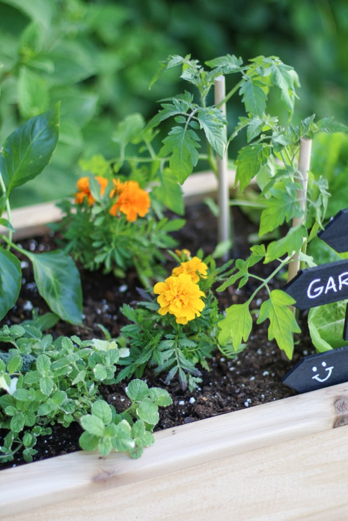 4 Steps to Creating and Styling an Outdoor Raised Vegetable Garden | Inspired by Charm