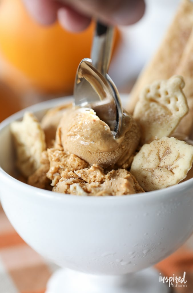 Pumpkin Pie Ice Cream - the perfect fall dessert with the rich and creamy taste of pumpkin pie.