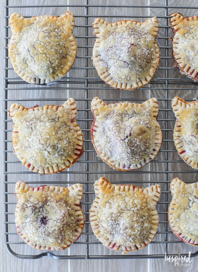 A delicious and easy handheld treat - Purrrfect Berry Hand Pies
