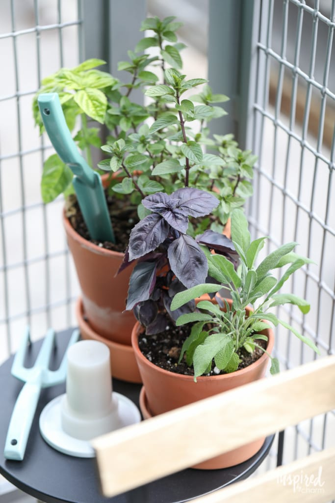 Outdoor Patio Decorating - Decor Ideas for Indoor/Outdoor Living