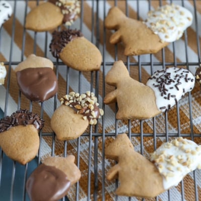 Chocolate Dipped Gingerbread Cookies shaped liked acorns and squirrels for fall! #cookie #gingerbread #fallcookieweek #recipe #chocolate #fallbaking