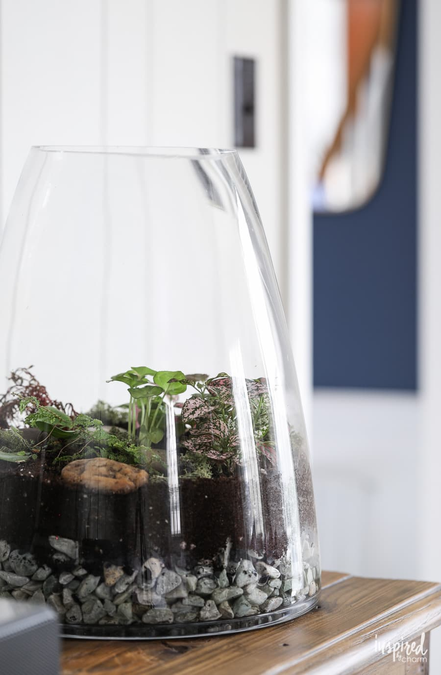 Learn how to make a terrarium! #terrarium #plants #diy #garden