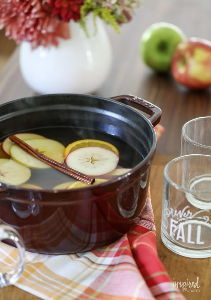 Homemade and really Good Cider Mulled Wine #apple #cider #mulled #wine #fall #cocktail #recipe